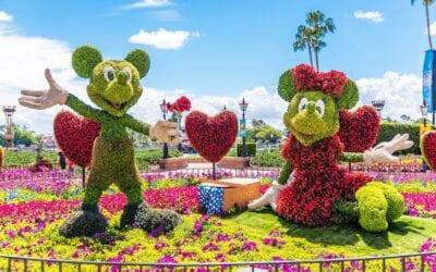 Dicas de parques e o que fazer na Disney