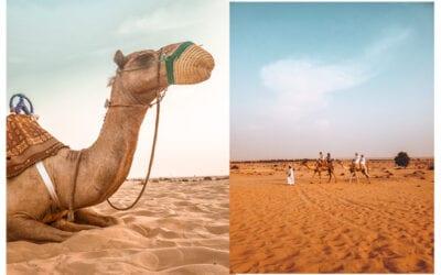 Dicas de lugares e roupas pra usar em Dubai